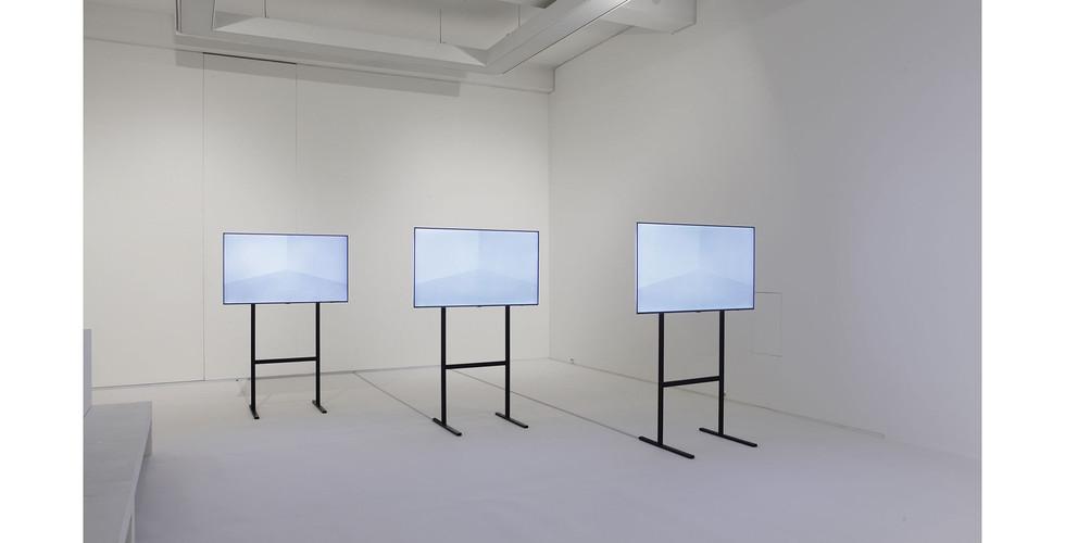 Installation view of Uncommon Sense, Salon de H, 2015