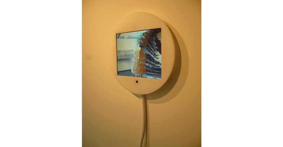 Shaking Time, 2005, computer, custom software, video camera, plexiglas, plastic tubing, 13 x 10 screen in a 19 12 enclosure, Edition of 6