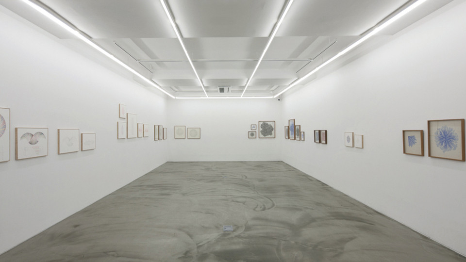 Installation view of solo exhibition, On the Circuit, Gallery Simon, 2011_8