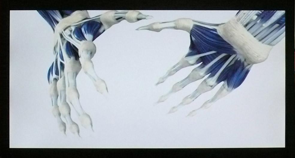 Anonymous Epic, 2008, HD, digital animation