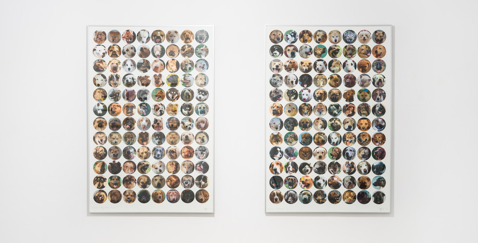 Yoon Dongchun, Politician - Only Things to Be Seen 1,2, 2011, C-print, 120 x 80 cm (each)