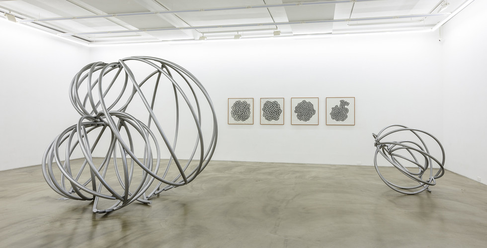 Installation view of Botanical Architecture, Gallery Simon, 2018