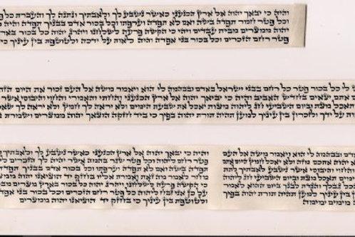 """תפילין מהודרים במיוחד כתב אשכנזי ב""""י או אר""""י"""