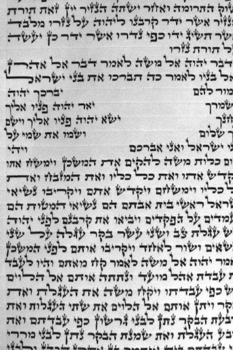 [ספר תורה כתב בית יוסף[עיד