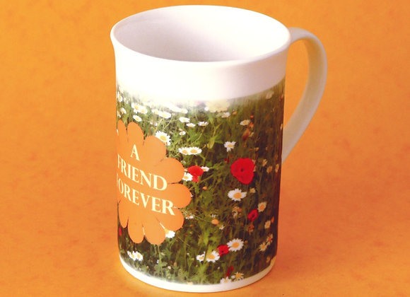 Bone China Mug with box