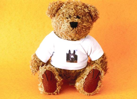Teddy Bear - small with T-shirt