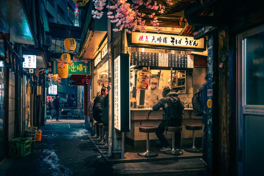 Memory Lane, Omoide Yokocho, Piss Alley