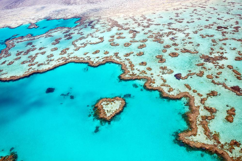 Great Barrier Reef Marine Park, Great Barrier Reef