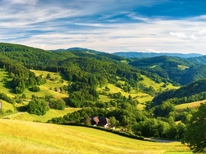 Explore The Black Forest with our guide!