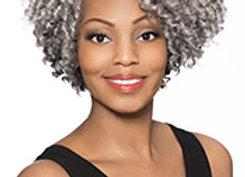 JOYCE-Foxy Silver Hair.