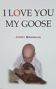 Book about a boy who fought childrens cancer