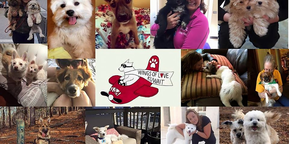 Adoption Meet & Greet/Doggy Drive with Free People