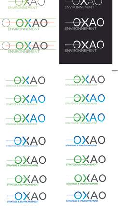 Logo et site internet OXAO