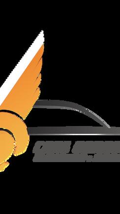 logo VTC cars