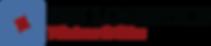 DSI_Logo 090519.png