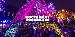 nocturnal-wonderland-hero-972x4862.jpg