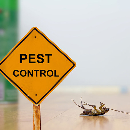 25 Ways to say Good-bye to the pests!