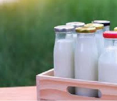 Have you ever wondered why milk is delivered before Sunrise?