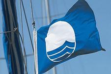 Blue Flag.jpg