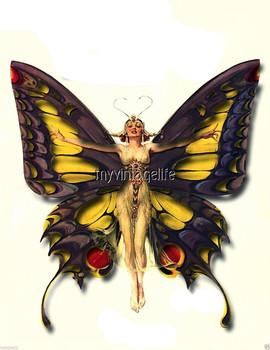 ladybutterfly.jpg