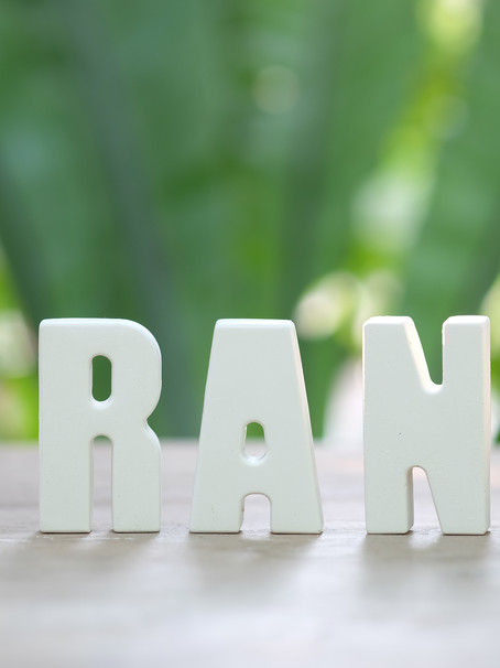 Role of branding in attracting and influencing consumer purchasing decisions