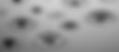 bngoccia-13-1_edited.jpg