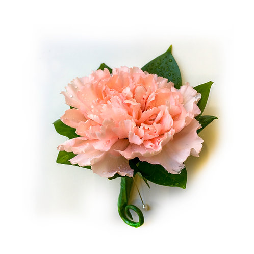 PEACH CARNATION BUTTONHOLE