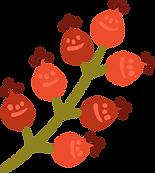 Blütenknospen