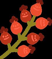 Botões de flores