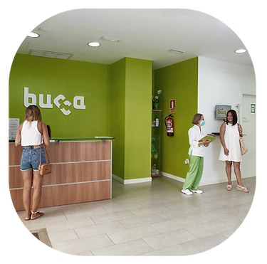 instalaciones bucca4.png
