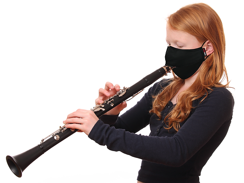 Dual-Layer Wind Instrument Face Mask