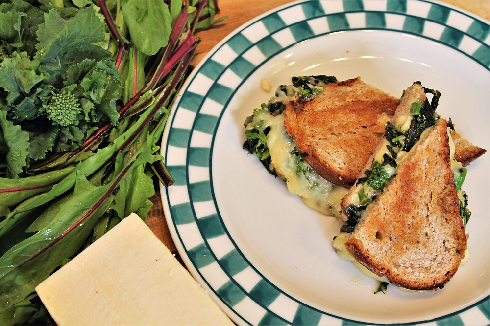 panini on the plate, big chunk of cheese and greens