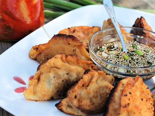 Venison and kimchi pot stickers (VIDEO)