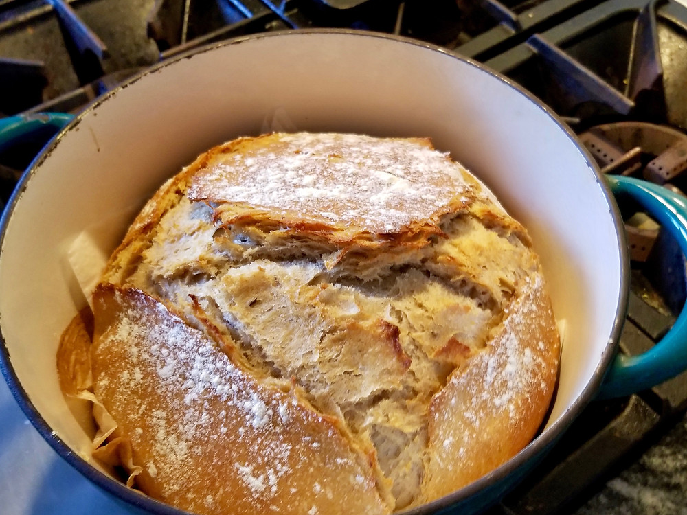 Homemade artisan sourdough rye bread fresh out of the oven, still in the Dutch oven
