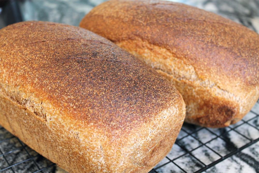 two loaves of sandwich bread