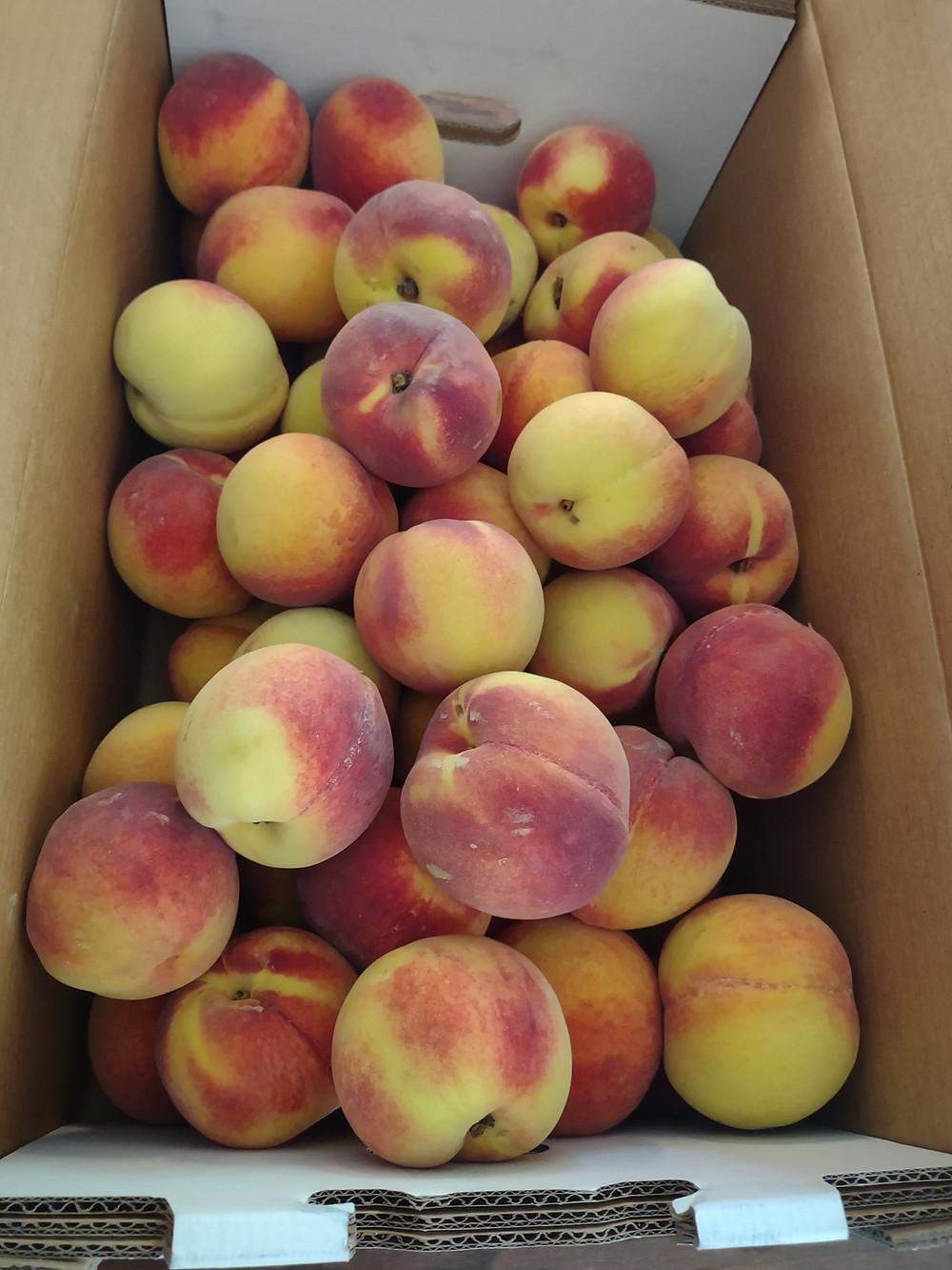 peaches in a box