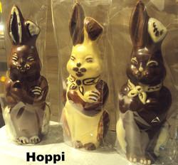 Hoppi 2_edited