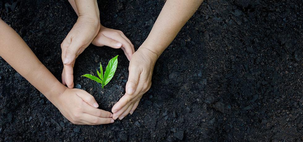 nachhaltigkeit_2.jpg