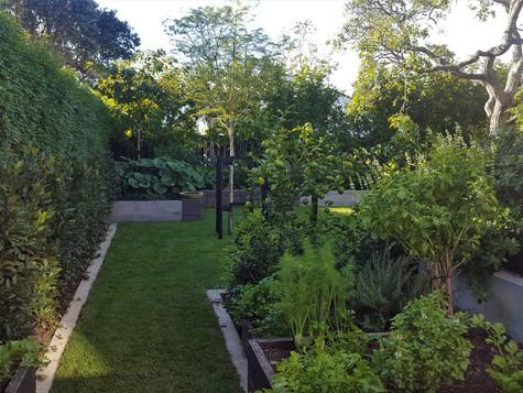 Remuera Garden