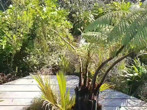 Video of pool and garden by the sea
