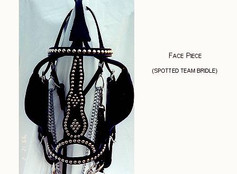 Spotted Mule Team Bridle