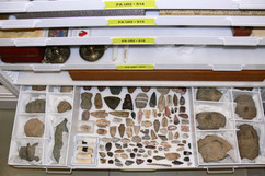 Fossil and Arrowhead Storage in Pull-Out