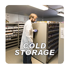 COLD STORAGE.PNG