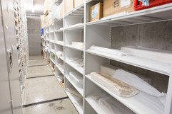 Fossils stored on mobilized shelving at