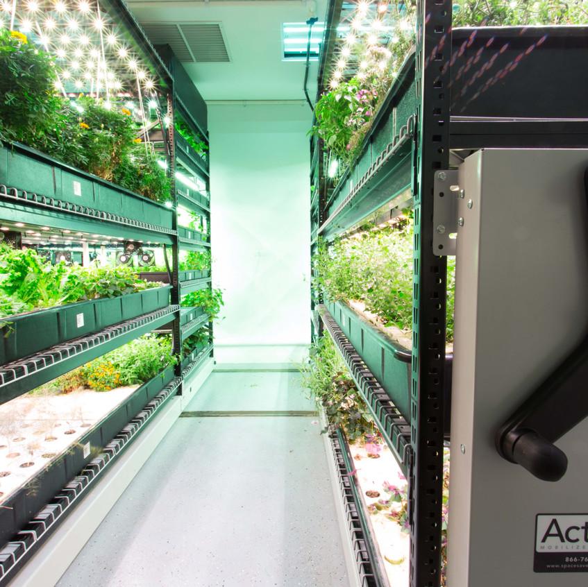 hydroponics-moving-shelving-racking-rails