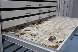 Museum cabinets to keep your artifacts o