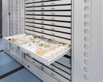 Museum cabinets on mobile provide a clea