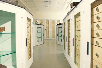 Meteorite Storage in Geology Cabinets at