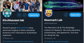 Ciencia en tiempos de Twitter