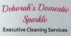 Deborahs Domestic Sparkle